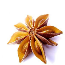 Star Anise for Anise Essential Oil