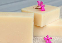 Camellia Coconut Milk Soap Recipe by Soap Making Essentials