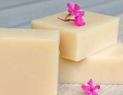 camellia coconut milk soap